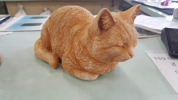 Sleeping Cat ginger